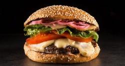 tt-burger-2