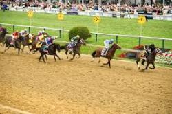 The Top 5 Most Memorable Preakness Stakes Winners
