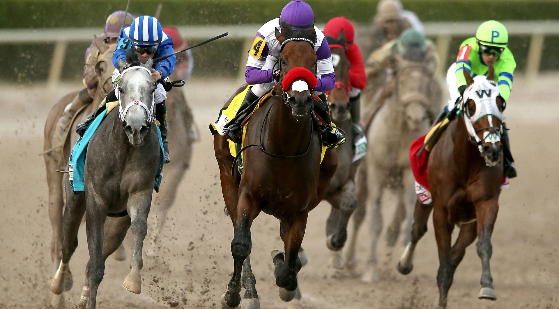 preakness stakes package rates